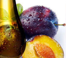 huile vierge de prune Perles en Gascogne