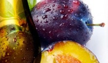 Vignette huile-prune