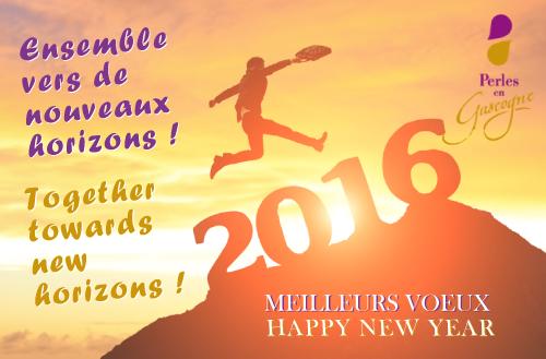 Voeux 2016 bilingue